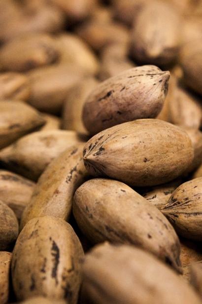 Tucker Pecan nuts