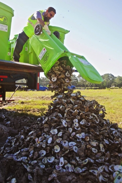Recycling Oyster Shells